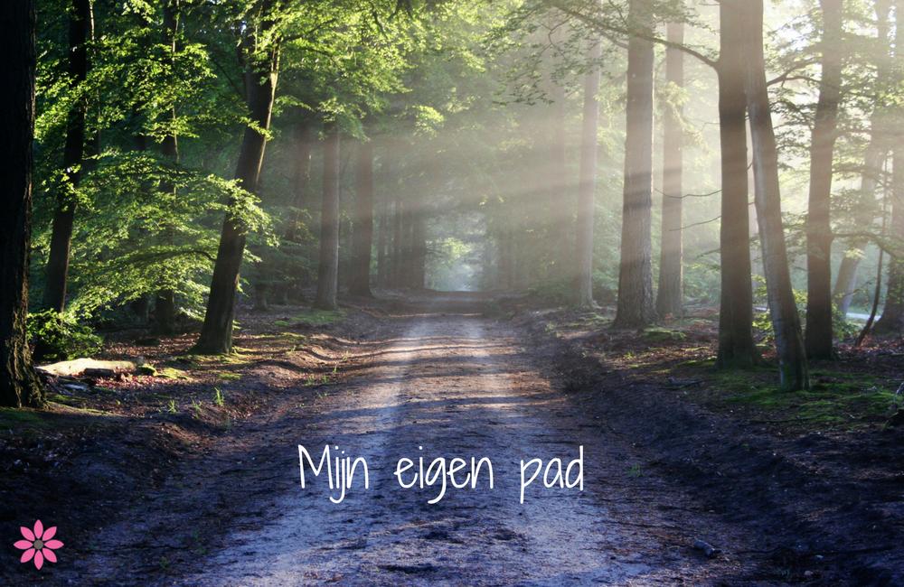 Mijn eigen pad